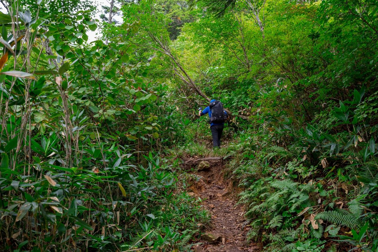 200922平ヶ岳-090