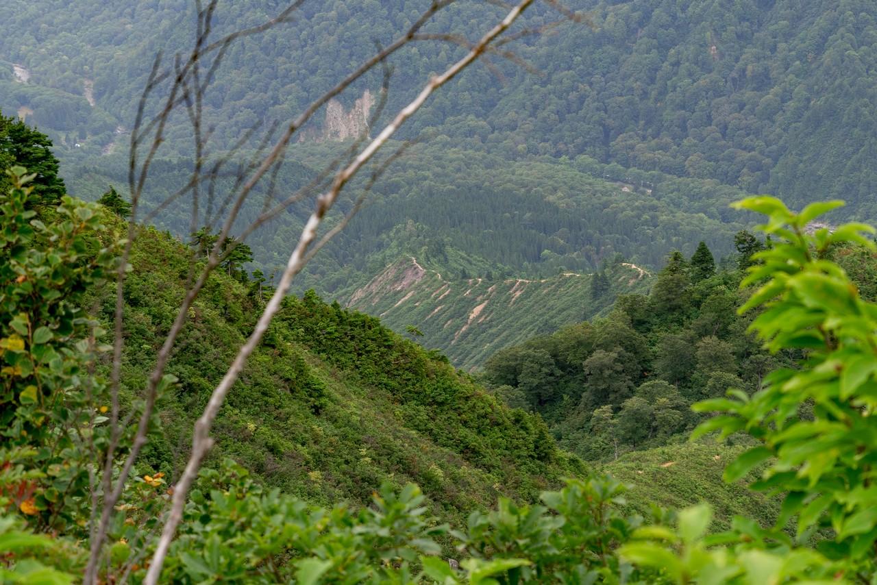 200922平ヶ岳-093