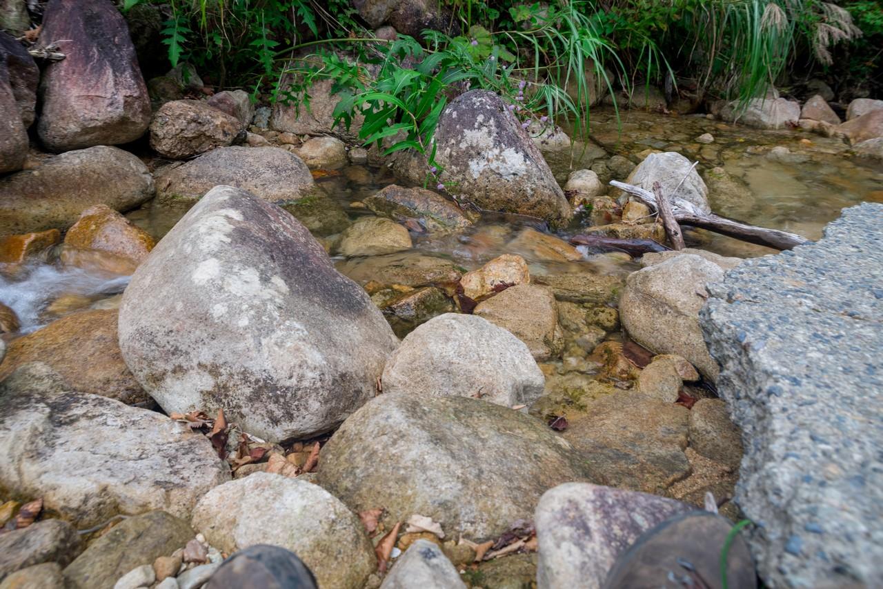 200922平ヶ岳-098