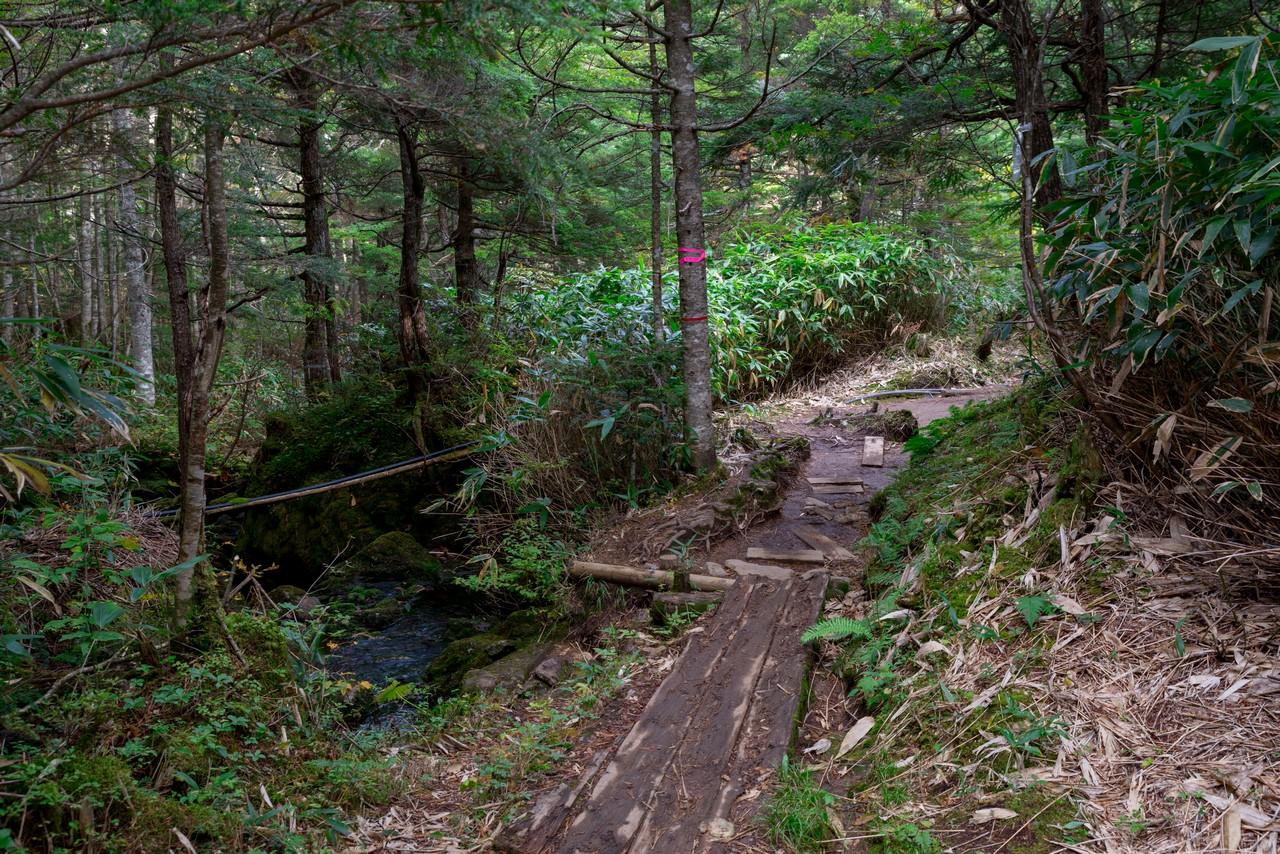 201006乗鞍岳-019