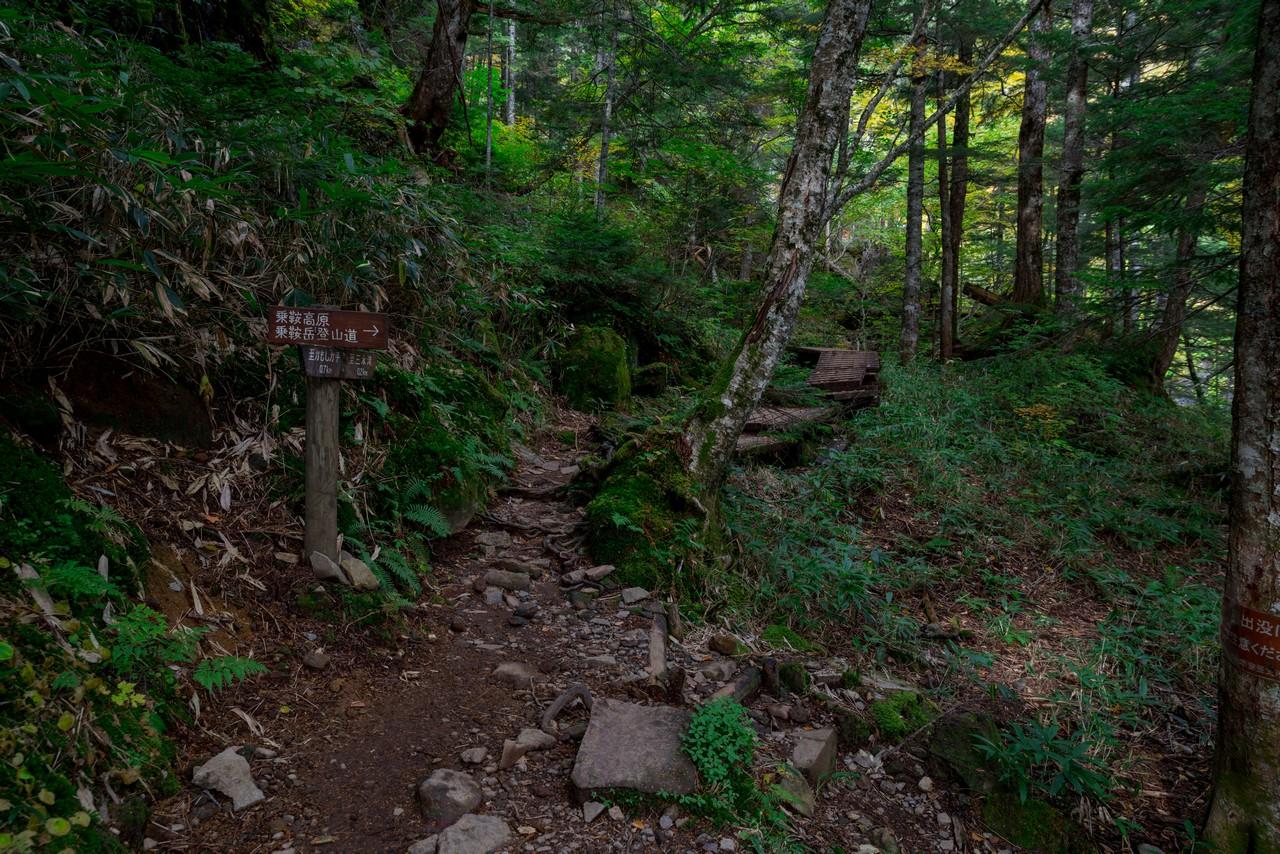 201006乗鞍岳-021