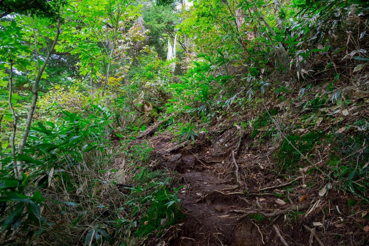 201006乗鞍岳-032