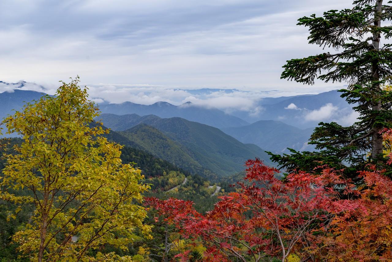 201006乗鞍岳-053