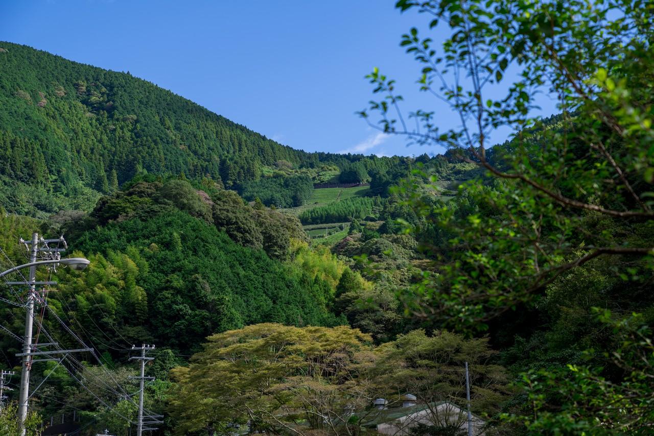 201011竜爪山-016