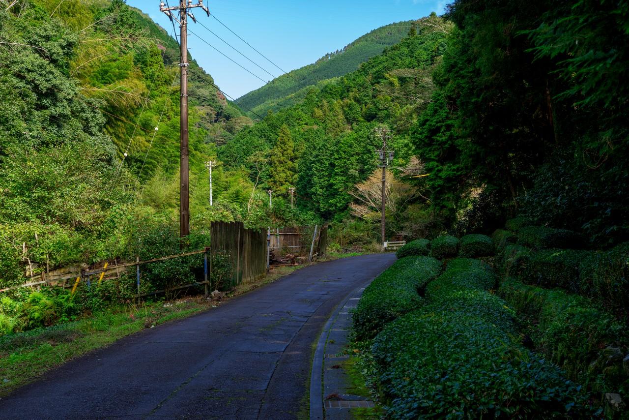 201011竜爪山-021