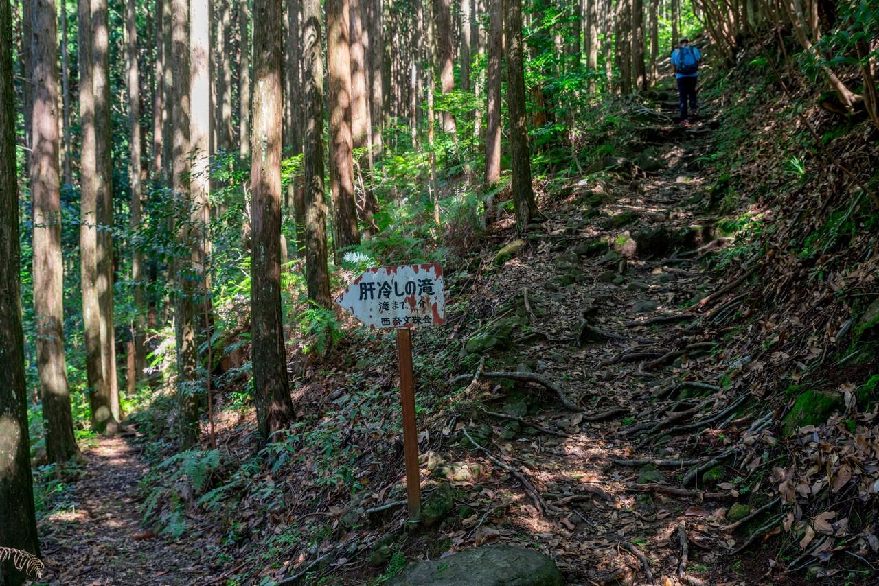 201011竜爪山-035