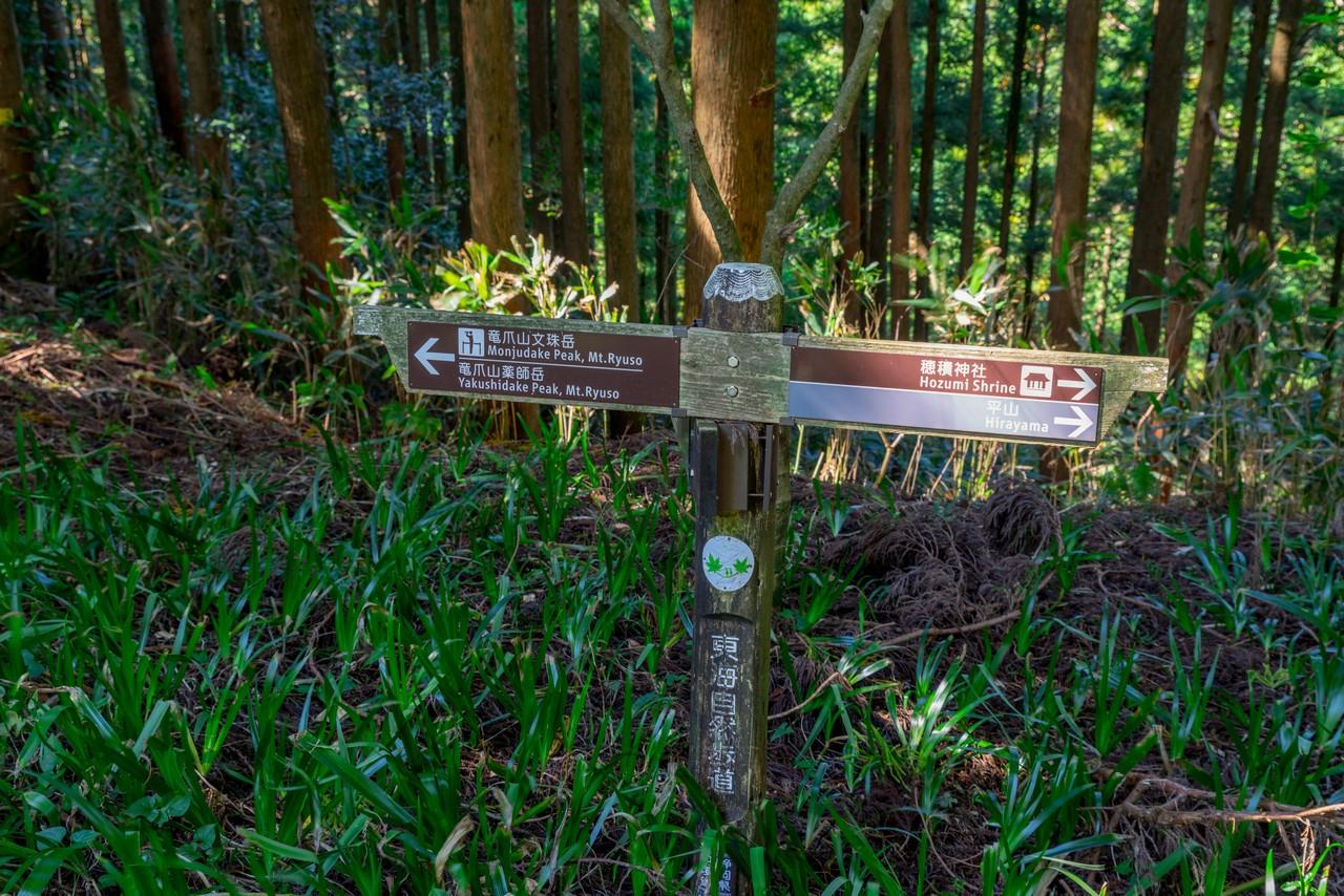 201011竜爪山-049