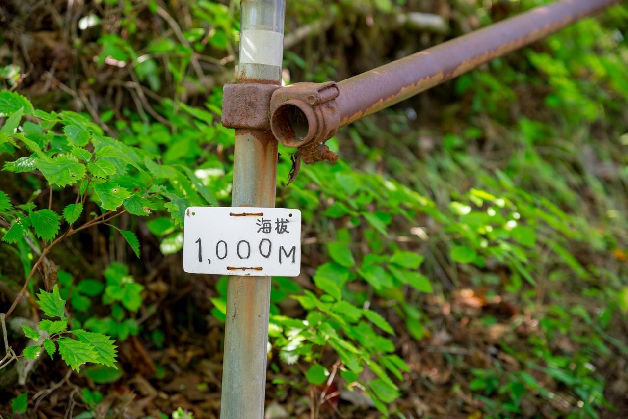 201011竜爪山-058