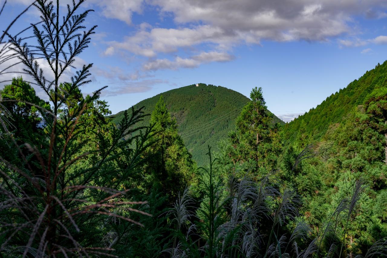 201011竜爪山-087