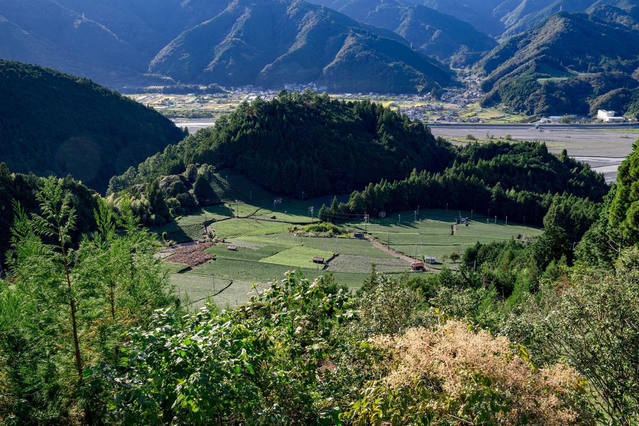 201011竜爪山-094