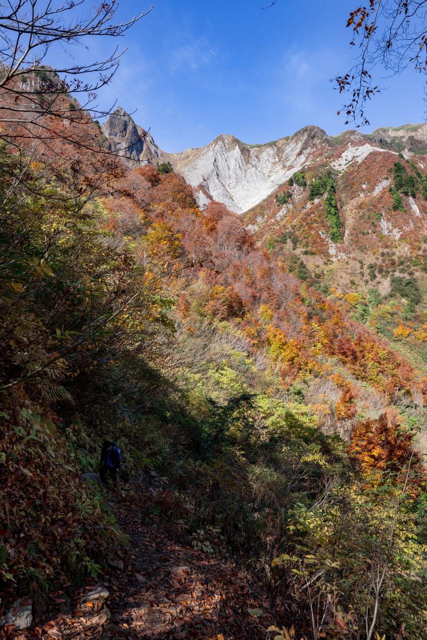 201021雨飾山-052
