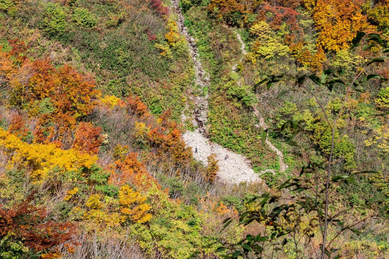 201021雨飾山-053