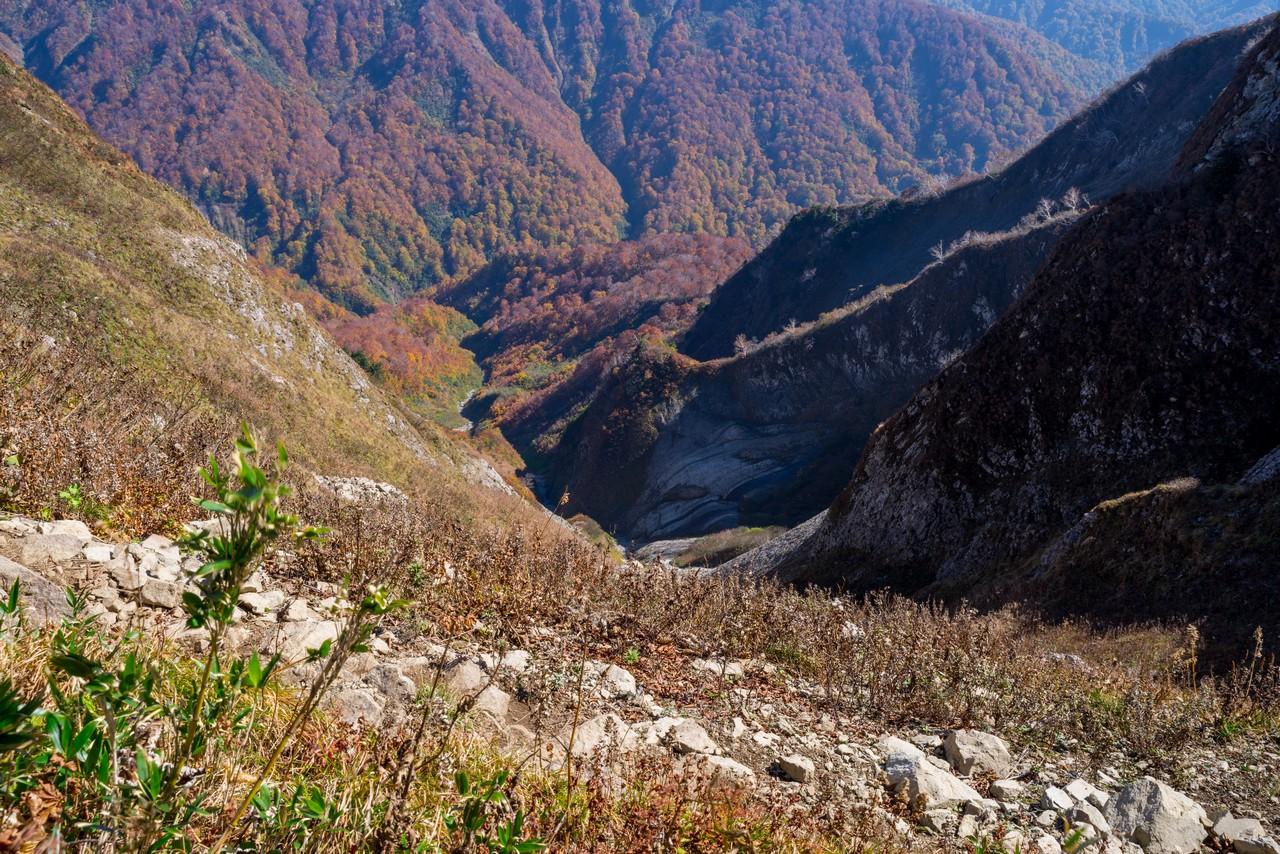 201021雨飾山-075