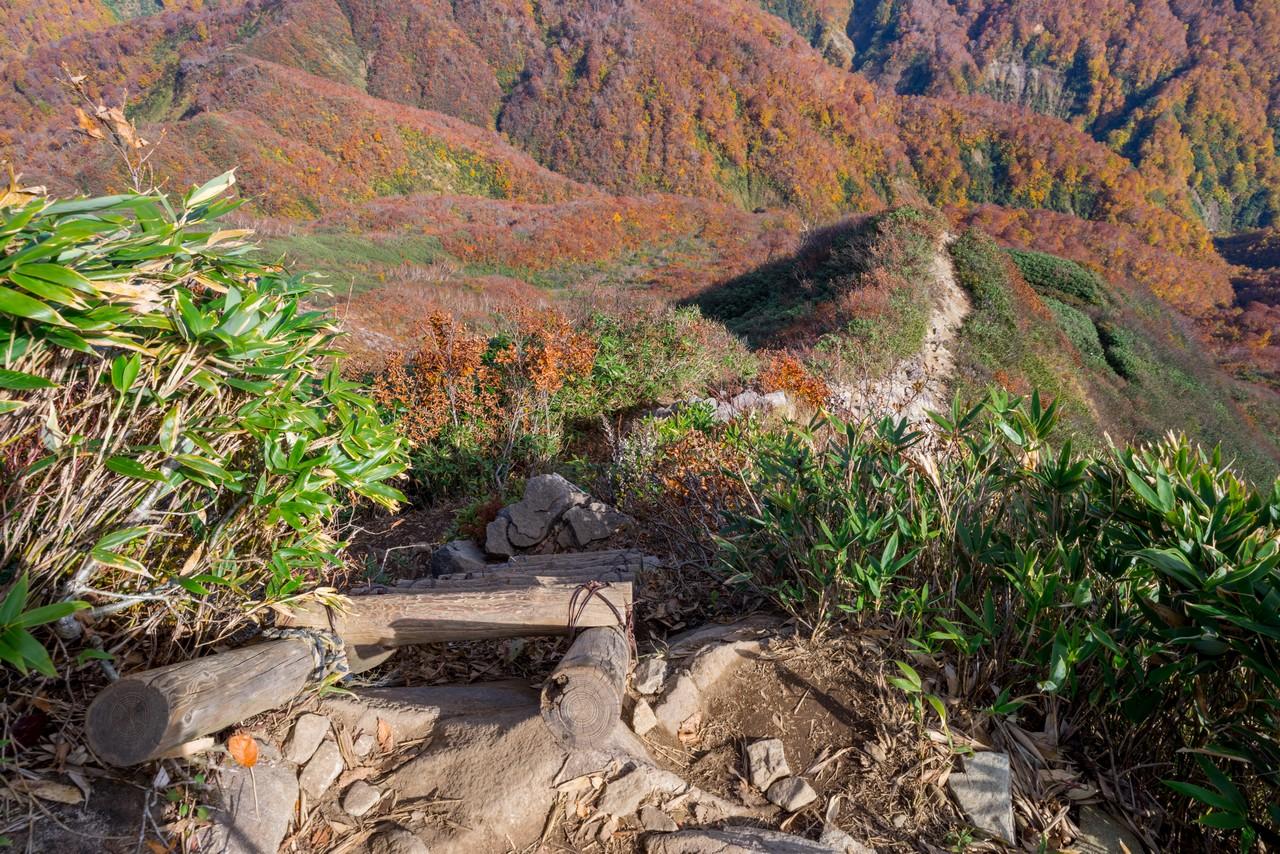 201021雨飾山-093