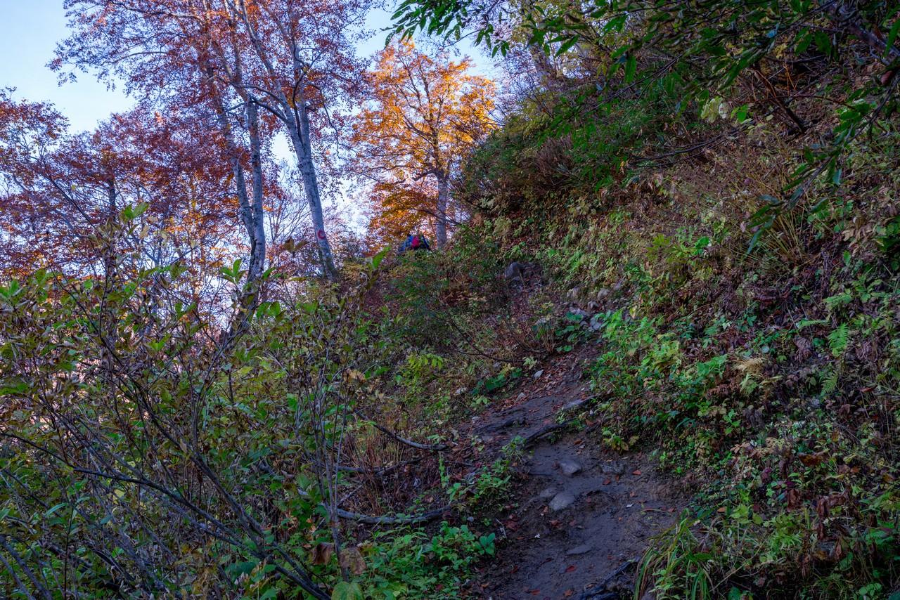 201021雨飾山-098