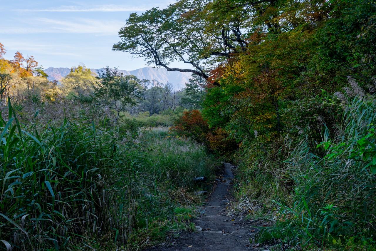 201021雨飾山-106