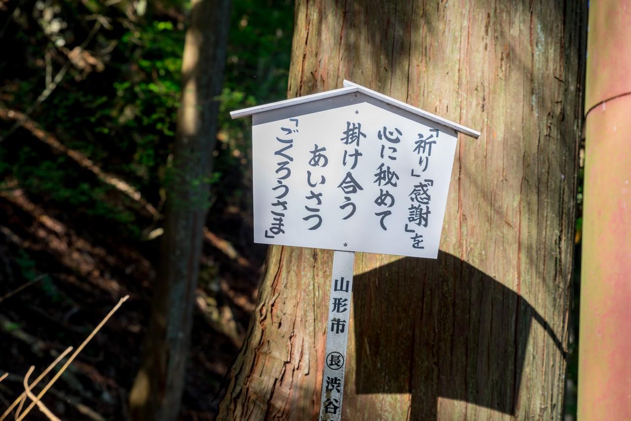 201031七面山-034