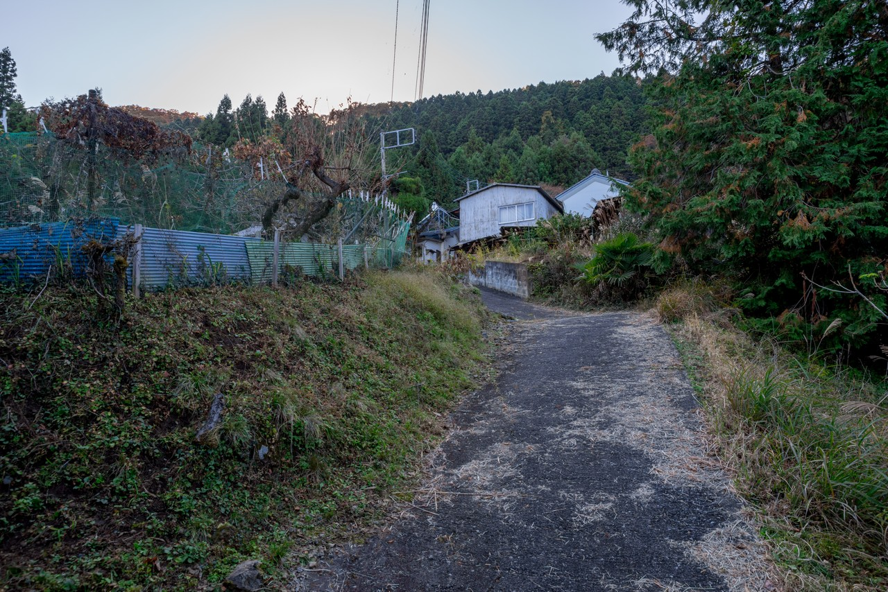 201115城峯山-074
