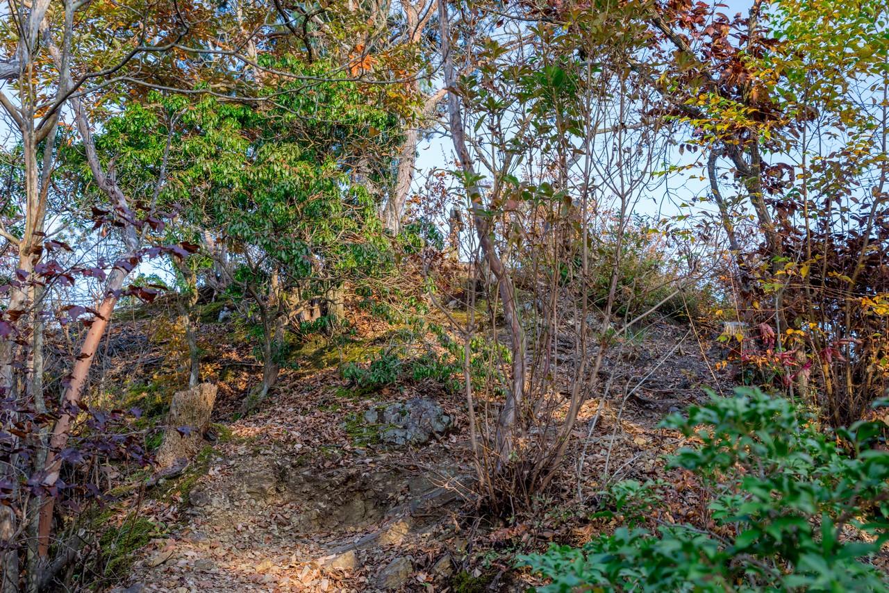 201115城峯山-095