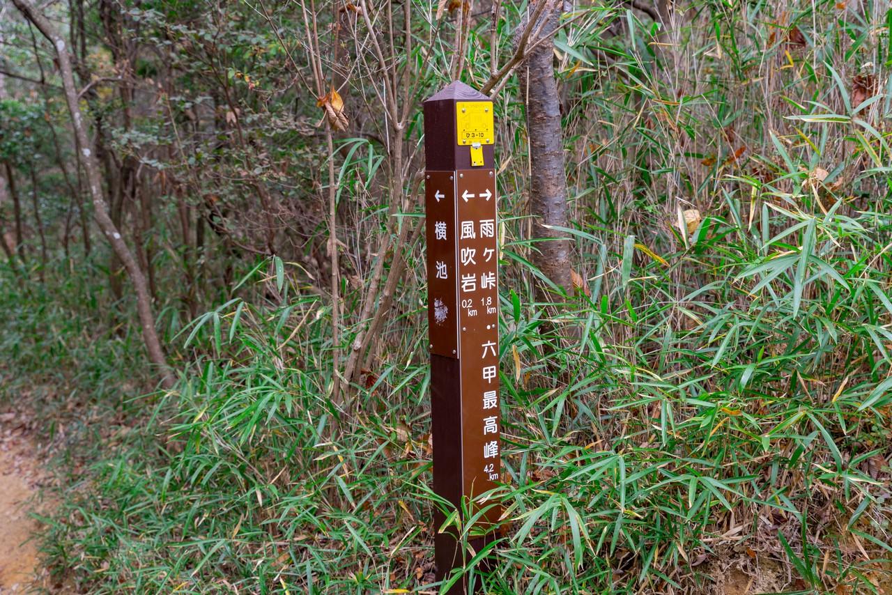 201122六甲山-037