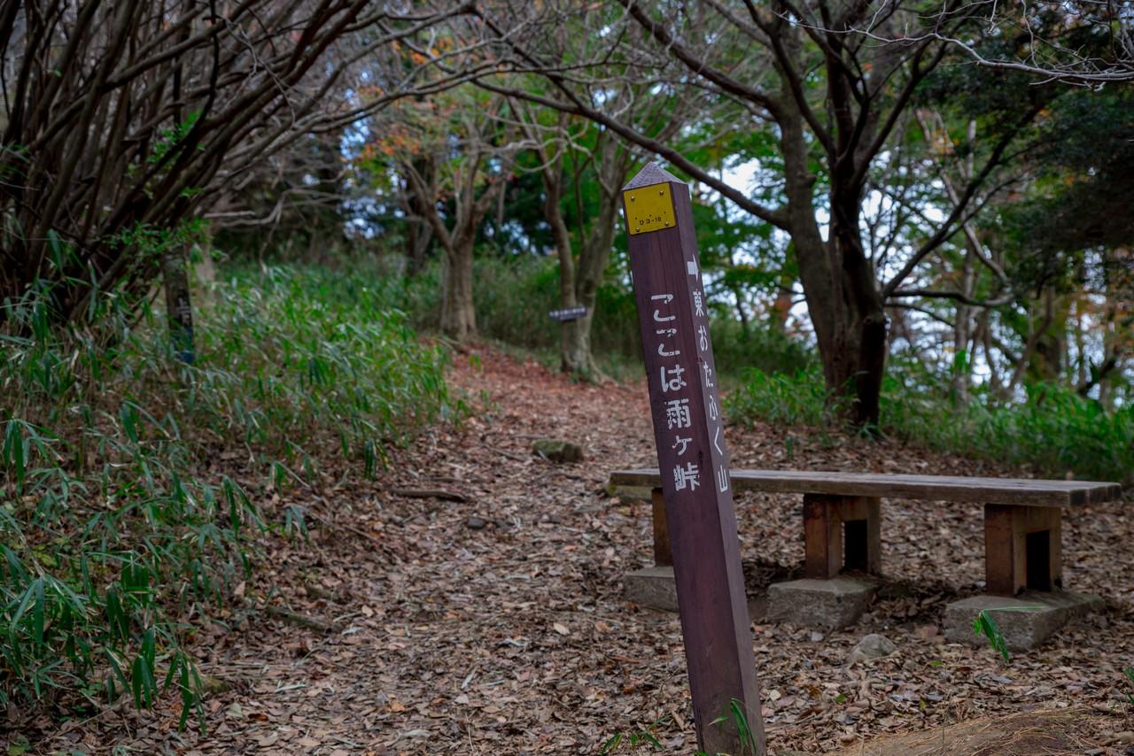 201122六甲山-046