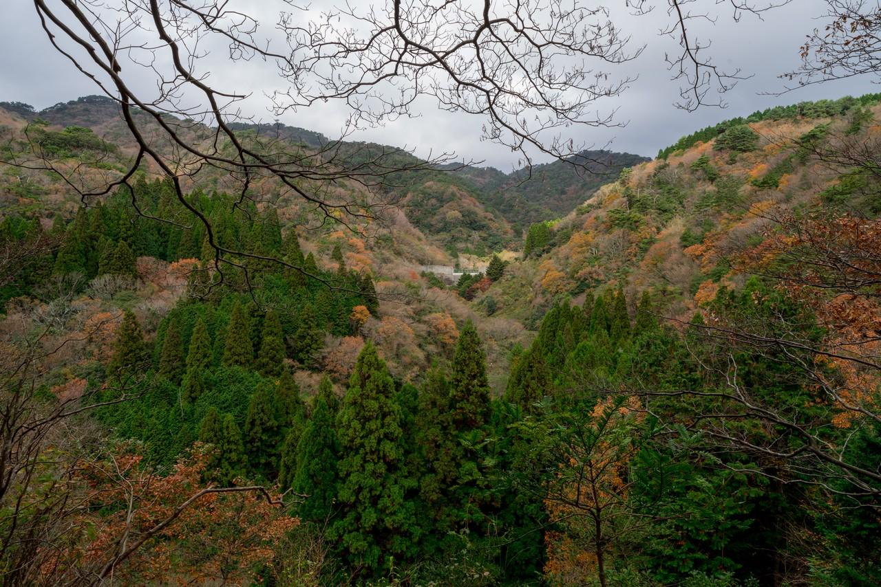 201122六甲山-048