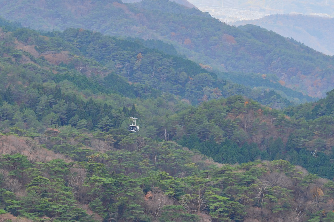 201122六甲山-066