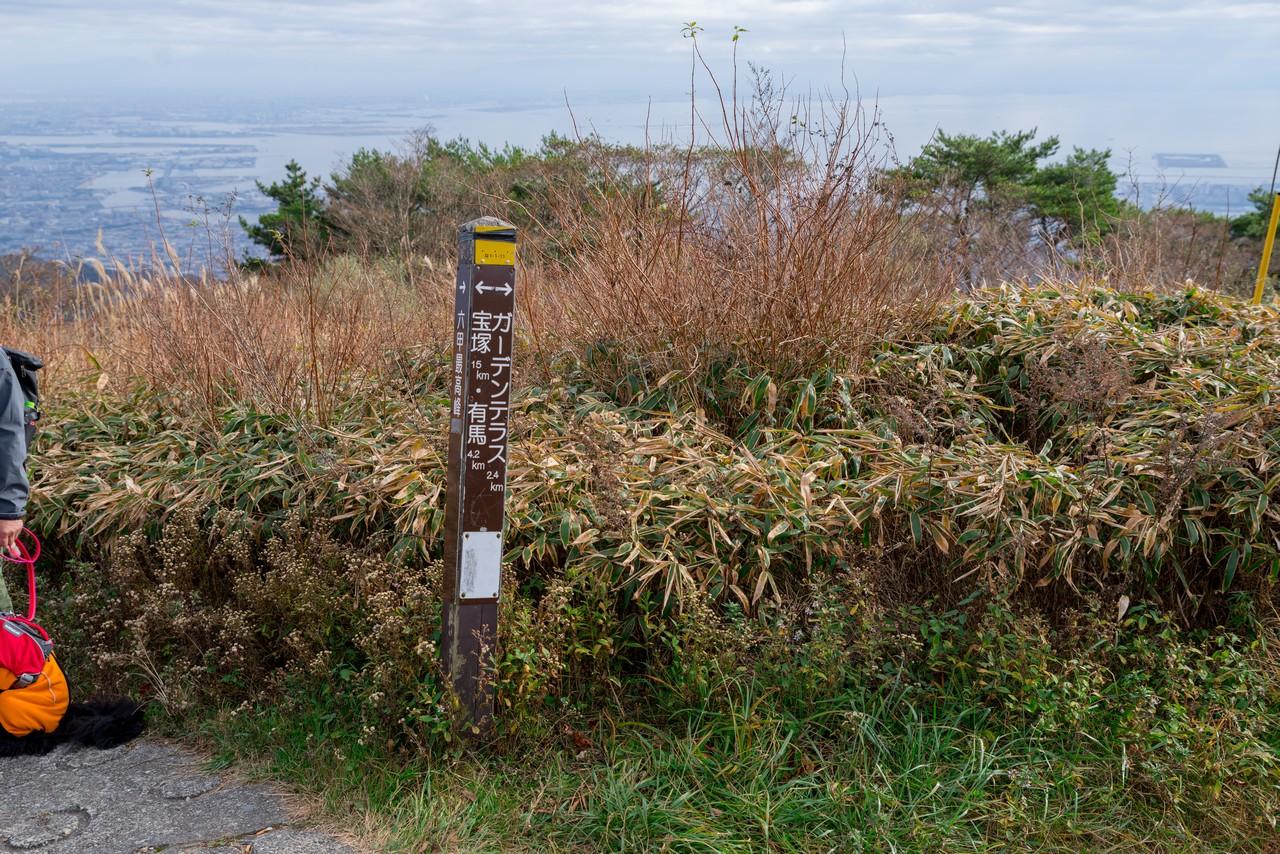 201122六甲山-067