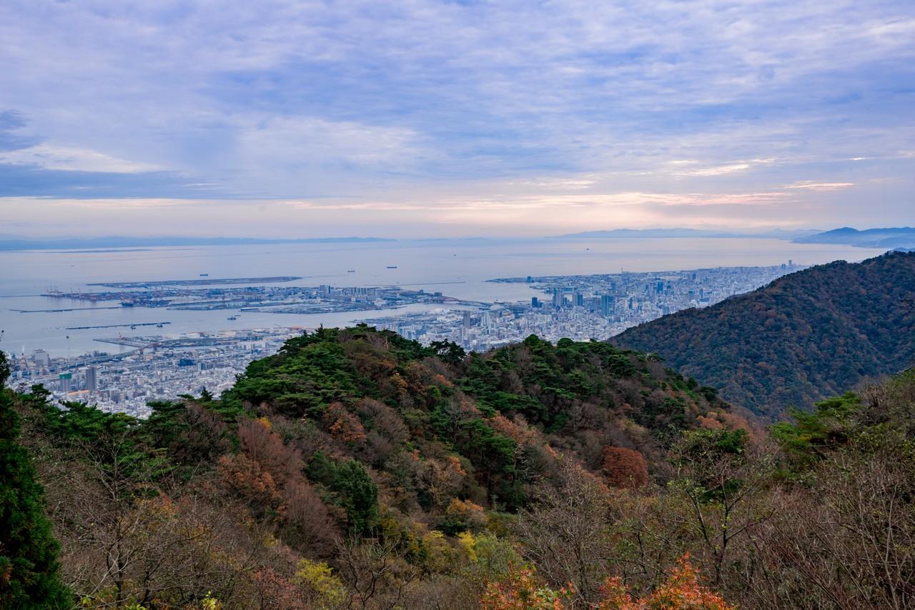 201122六甲山-082