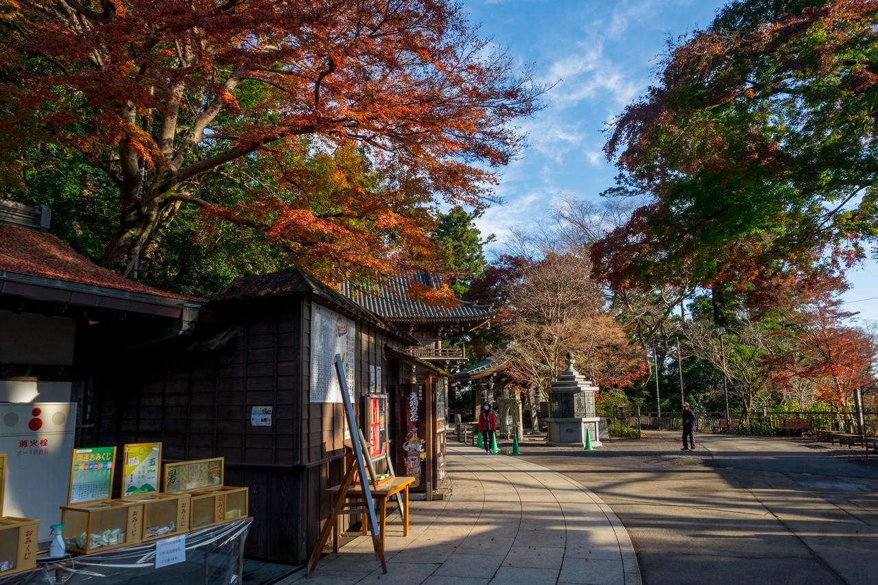 201126高尾山-003