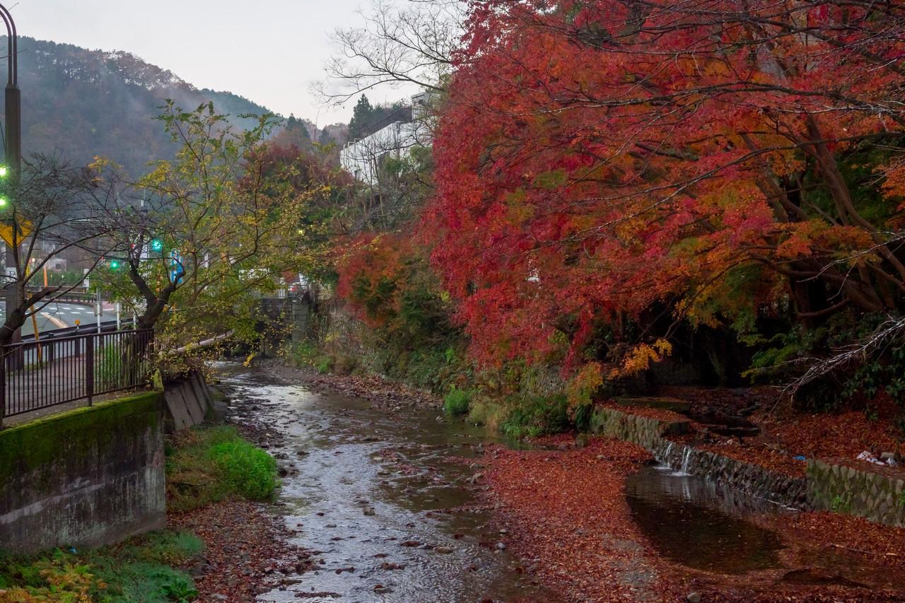 201126高尾山-007