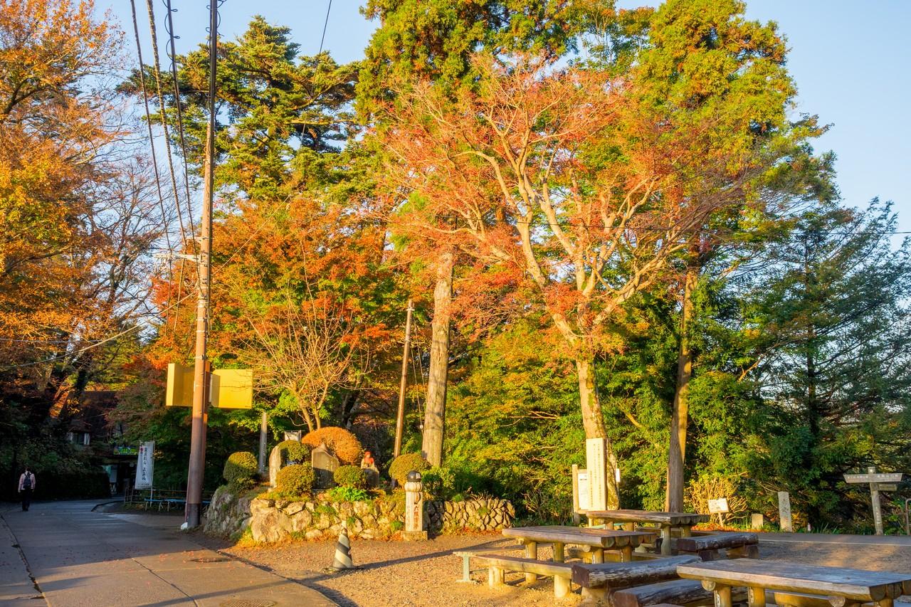 201126高尾山-021