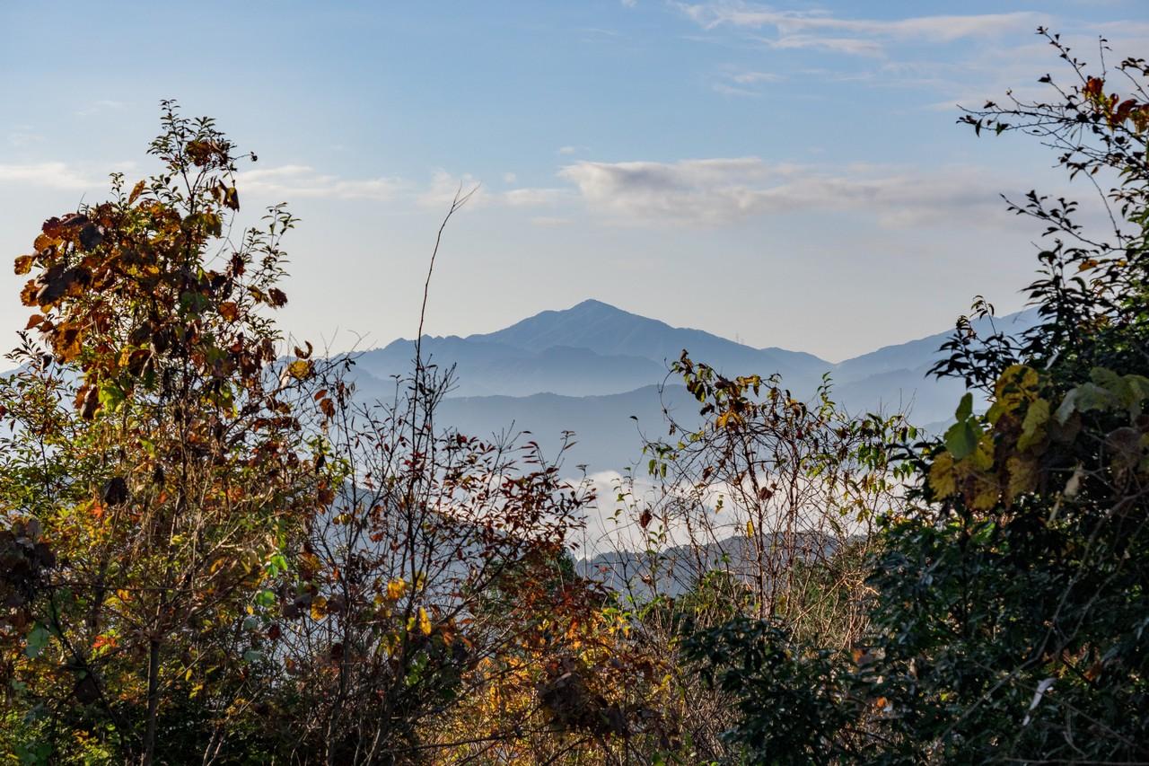 201126高尾山-051