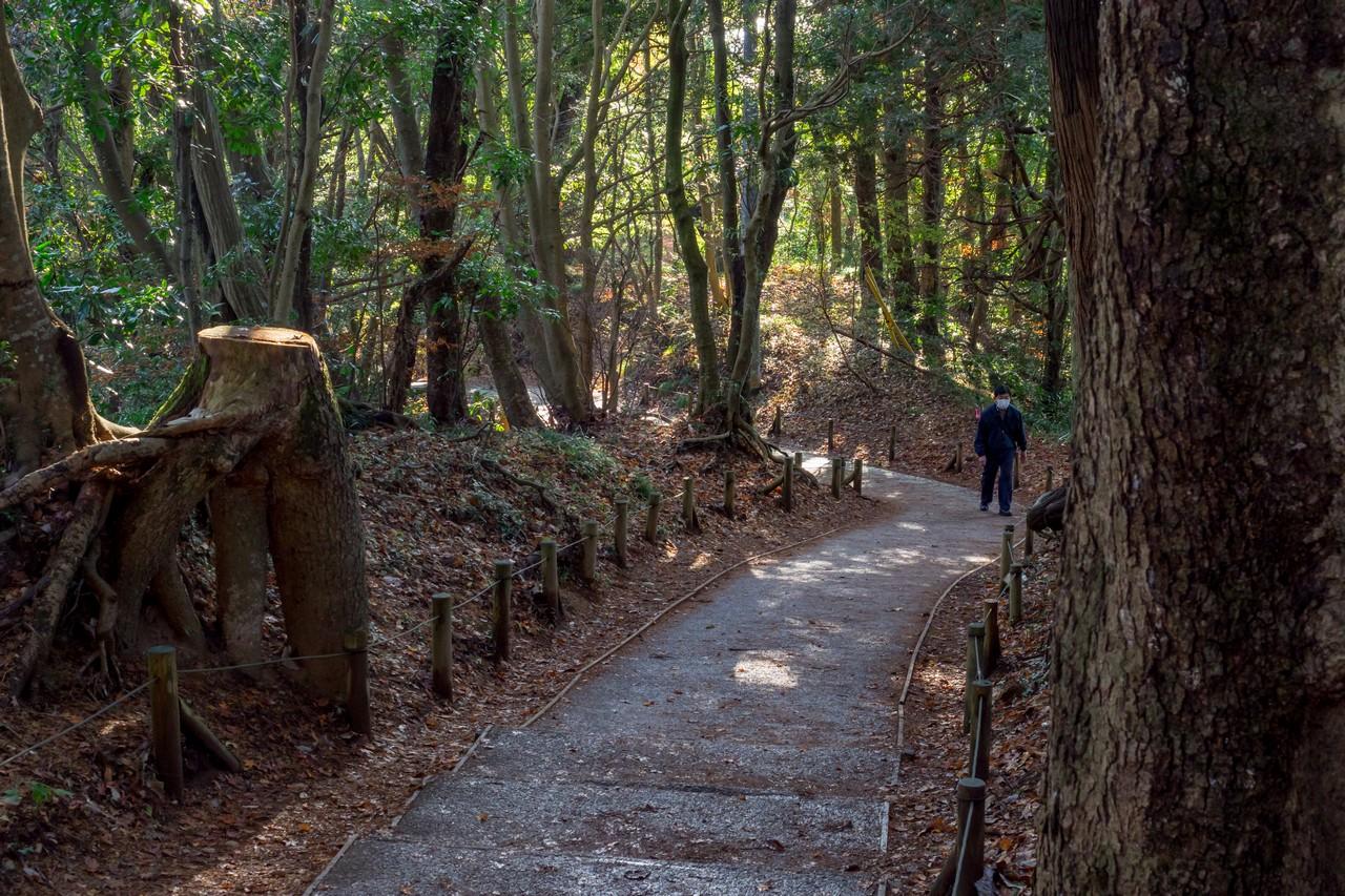 201126高尾山-055