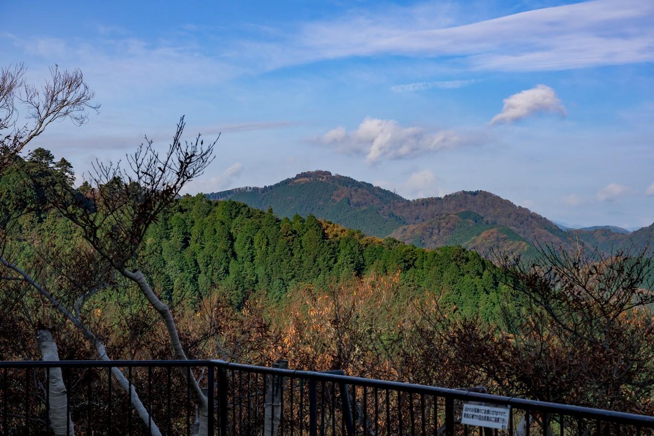 201126高尾山-063