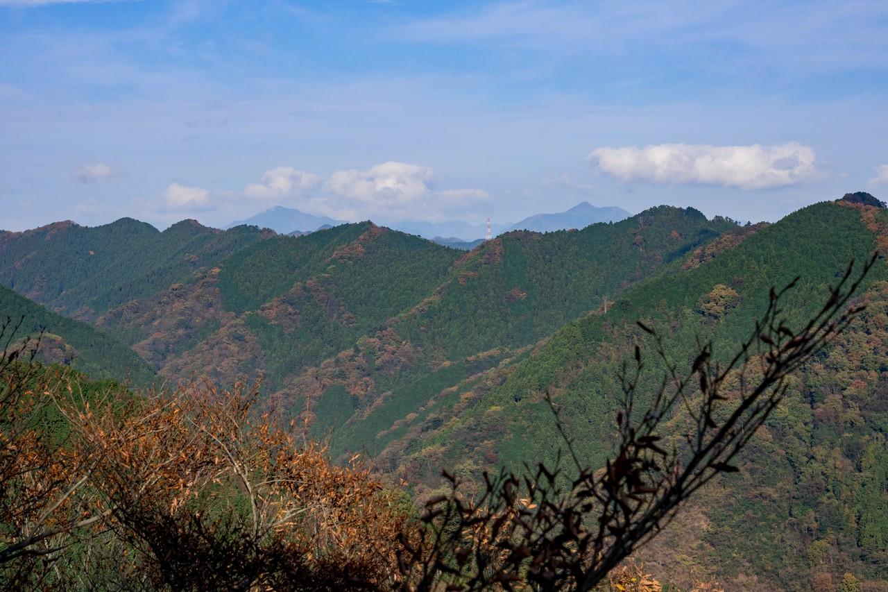 201126高尾山-064