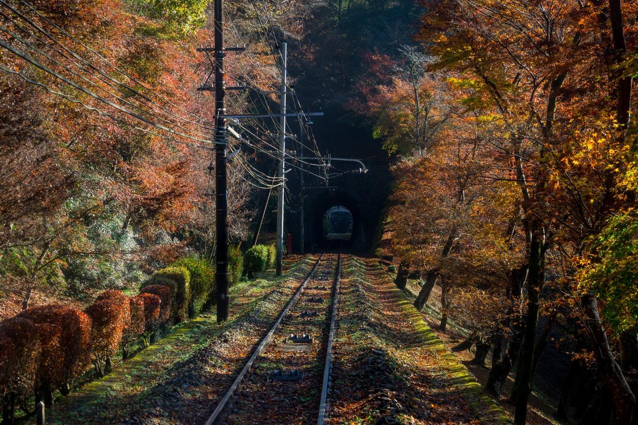 201126高尾山-071
