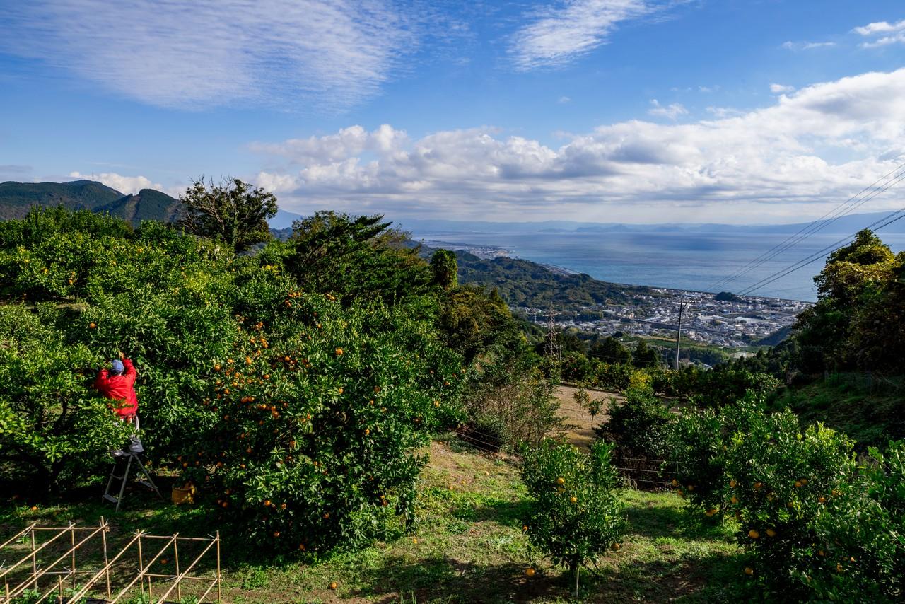 201129浜石岳-004