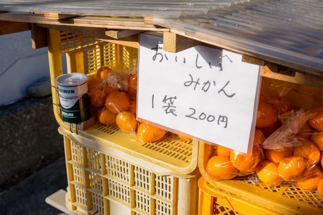 201129浜石岳-014