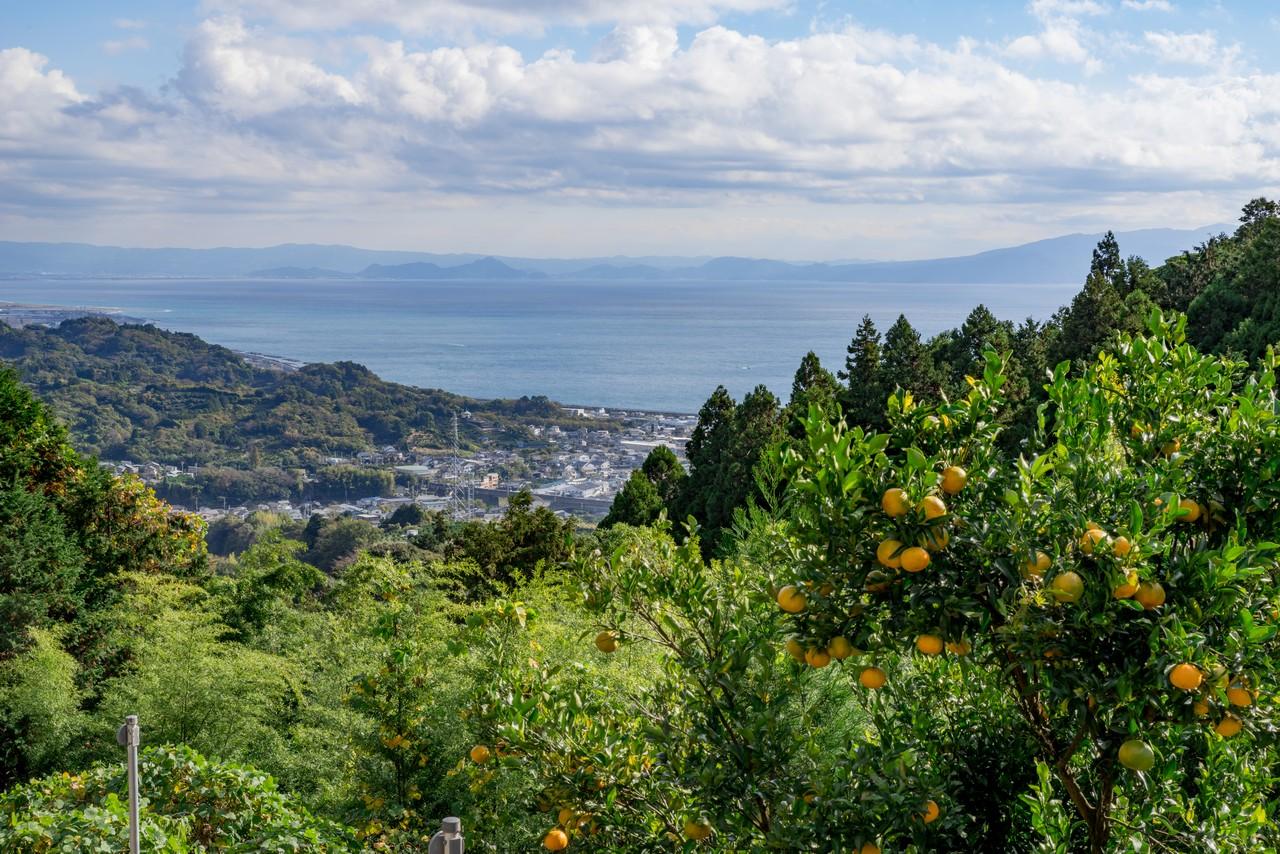 201129浜石岳-033