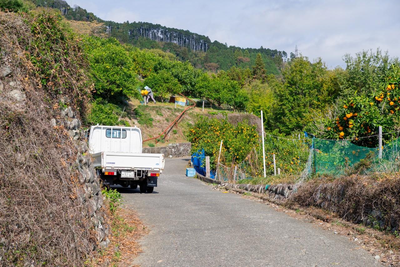 201129浜石岳-035