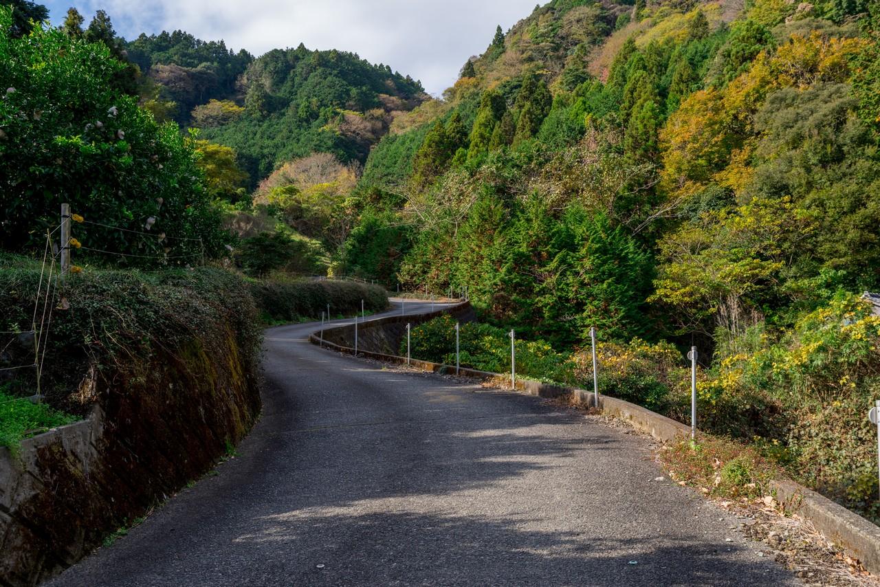201129浜石岳-038