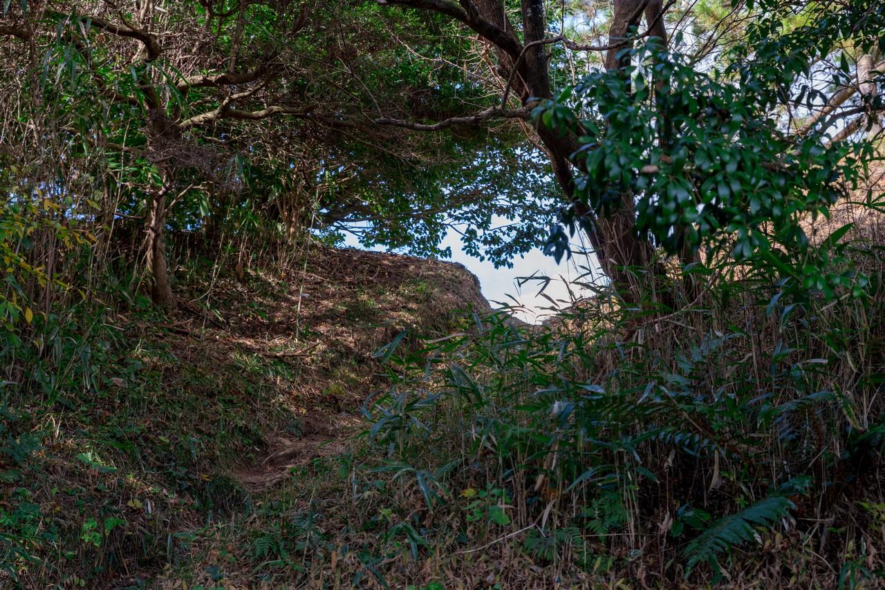 201129浜石岳-047