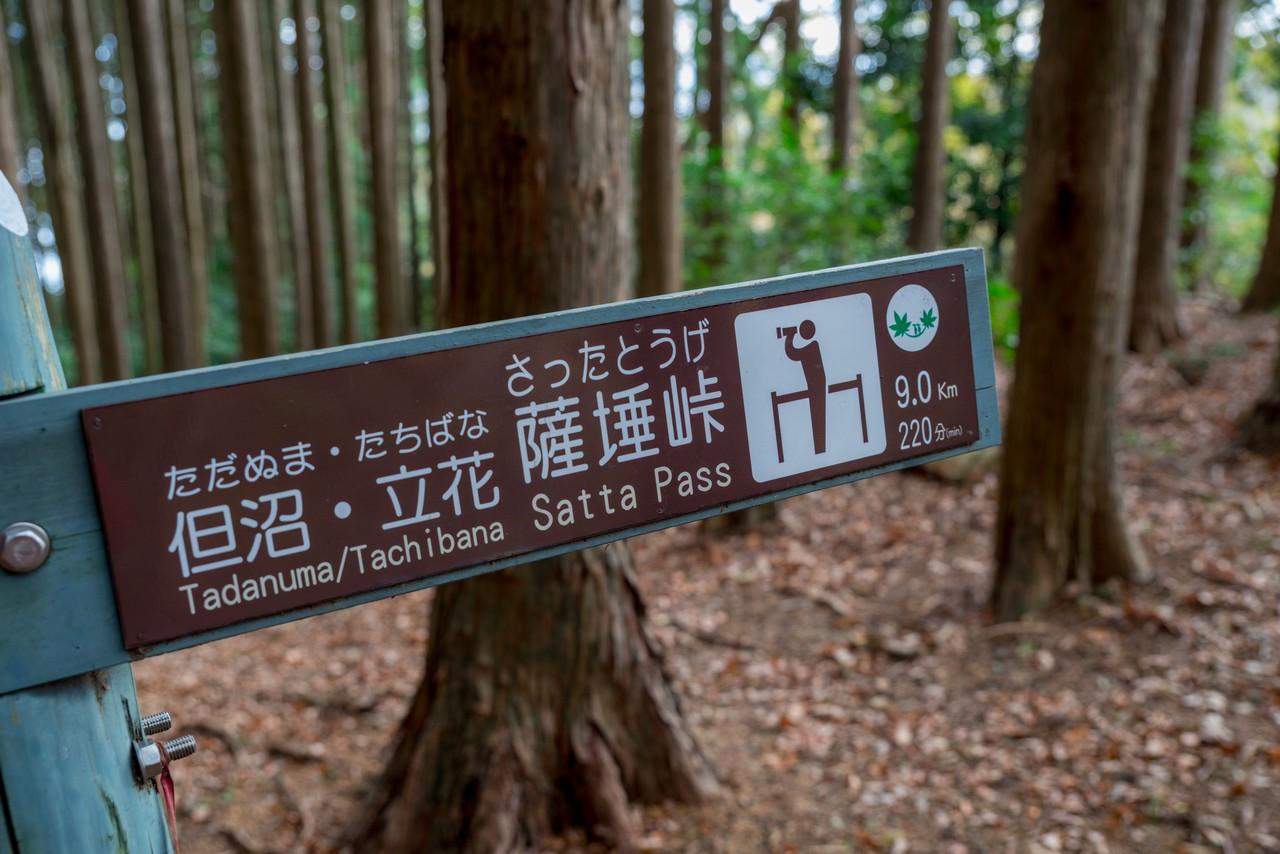201129浜石岳-069