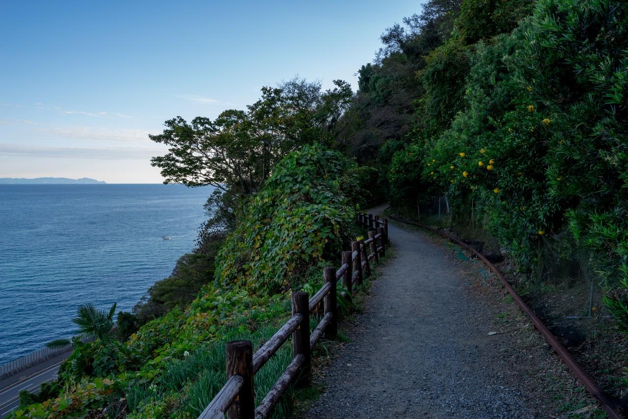 201129浜石岳-086