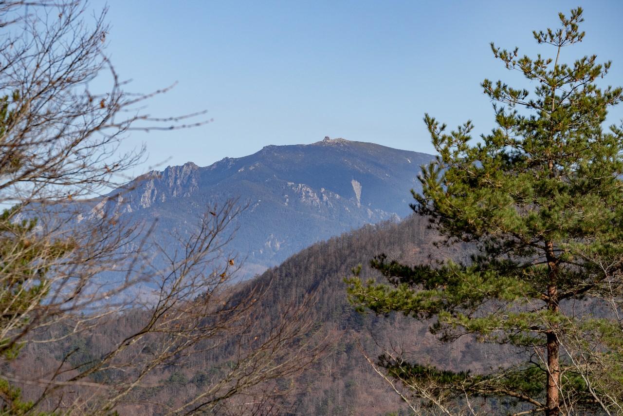 201206帯那山-036