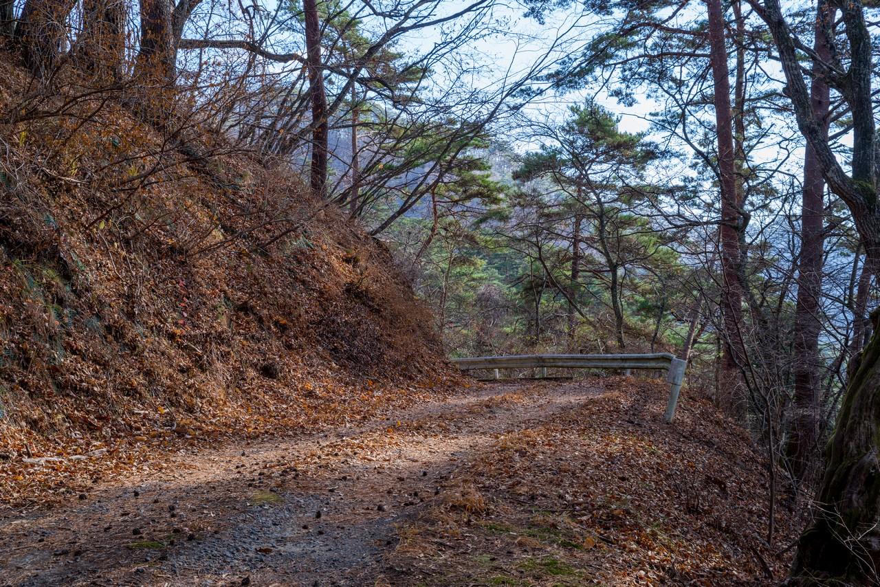 201206帯那山-063