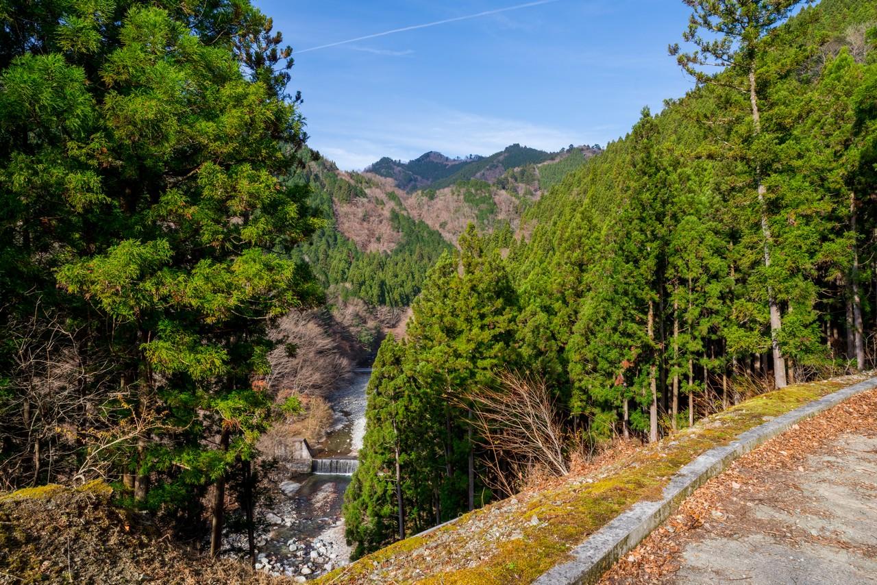 水ノ木幹線林道から見た世附川