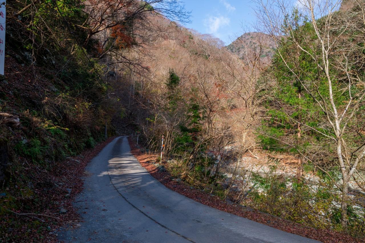 浅瀬橋の分岐路