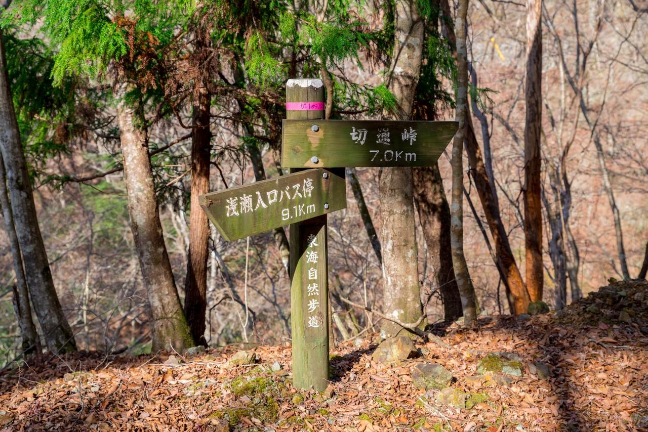 201213高指山-059